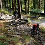 Trails im TrailCentre Coed y Brenin