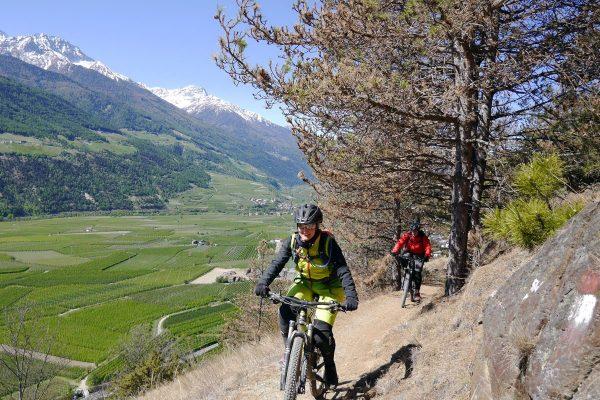 Trailacadem Trailcamp Vinschgau